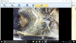 Screenshot (7).jpg