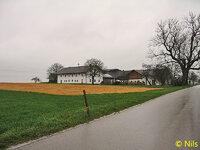 2)  Bild von Nils [Gelbe Wiese].jpg
